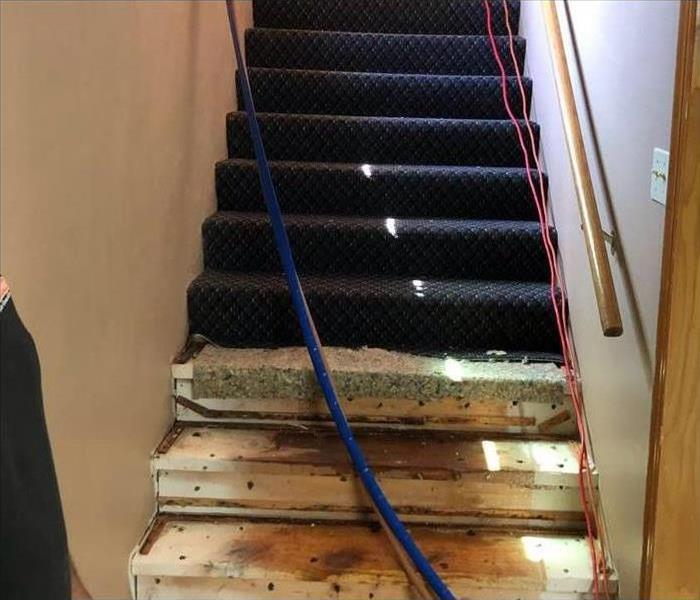 Stairway With Removed Carpet Due to Prolonged Water Damage