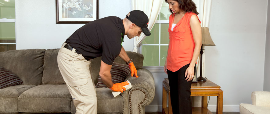 North Vernon, IN carpet upholstery cleaning